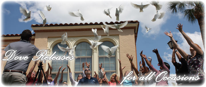 White Dove Releases in Florida